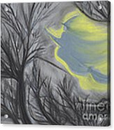 Witch Wood By Jrr Acrylic Print