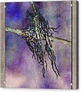Witchride Acrylic Print