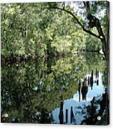 Withlacoochee River Reflections Acrylic Print