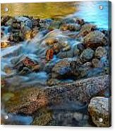 Without Obstruction Acrylic Print