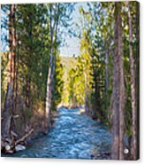 Wolf Creek Flowing Downstream  Acrylic Print