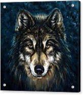 Wolf Head Acrylic Print