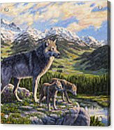 Wolf Painting - Passing It On Acrylic Print by Crista Forest