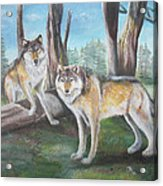 Wolves In The Forest Acrylic Print