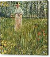 Woman In A Garden Acrylic Print by Vincent van Gogh