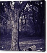 Woman Under A Tree Acrylic Print