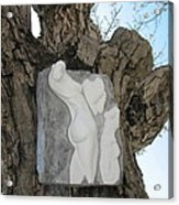 Woman Torso - Cast 1 Acrylic Print by Flow Fitzgerald