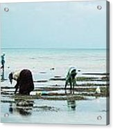 Women Of Zanzibar Acrylic Print