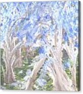 Wondering Through Trees Acrylic Print