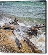 Wood And Water Acrylic Print