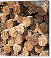 Wood Logs Acrylic Print