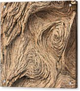 Wood Swirls Acrylic Print