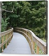 Wooded Walkway Acrylic Print