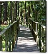Wooden Boardwalk Through The Forest Acrylic Print