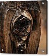 Wooden Eye Acrylic Print