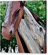 Wooden Horse21 Acrylic Print