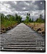 Wooden Path Acrylic Print