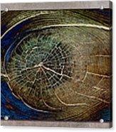 Woodeye Acrylic Print