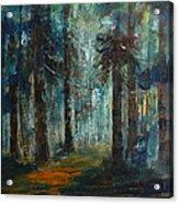 Woodland At Wilsonia 02 Acrylic Print