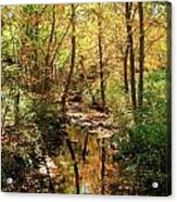 Woodland Brook  Acrylic Print