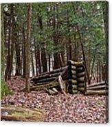 Woodland Cabin Ruins Acrylic Print