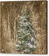 Woodland Christmas Acrylic Print