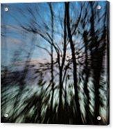 Woodland Flight Acrylic Print