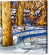 Woodland Graphic Acrylic Print