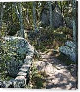 Woodland Path With Stone Wall Acrylic Print