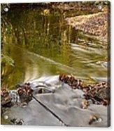 Woodland Water Acrylic Print