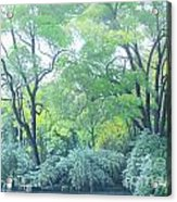 Woods Beside The Pond Acrylic Print
