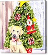 Woof Merry Christmas Acrylic Print by Irina Sztukowski