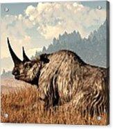 Woolly Rhino And A Marmot Acrylic Print