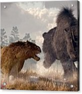 Woolly Rhino And Cave Lion Acrylic Print