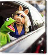 World Premiere Of Disneys Muppets Most Acrylic Print