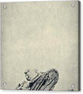 World War I Tank In Trench Warfare Acrylic Print by Edward Fielding