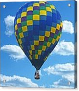 Would You Like To Fly Acrylic Print
