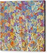 Woven Branches Long Acrylic Print
