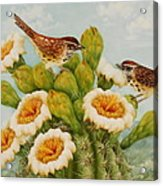 Wrens On Top Of Tucson Acrylic Print by Summer Celeste