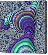 Wriggle Thru Time Acrylic Print