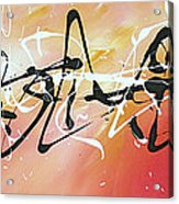 Writing On The Wall By Madart Acrylic Print