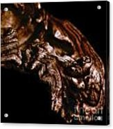 wudu 2 XXIII Acrylic Print