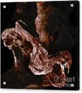 wudu 2 XXVIII Acrylic Print