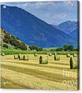 Wyoming Mountain Hay Farm Acrylic Print