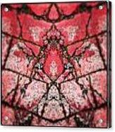 X Or Turtle Acrylic Print