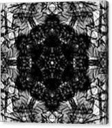 X-ray Of A Snowflake Acrylic Print
