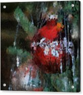 Xmas Red Ornament Photo Art 03 Acrylic Print