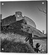 Roche Castle Acrylic Print by Pro Shutterblade