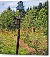 Yachats  Oregon - Blue Birdhouse Acrylic Print
