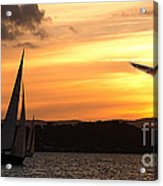 Yacht And Seagull Sunset Acrylic Print